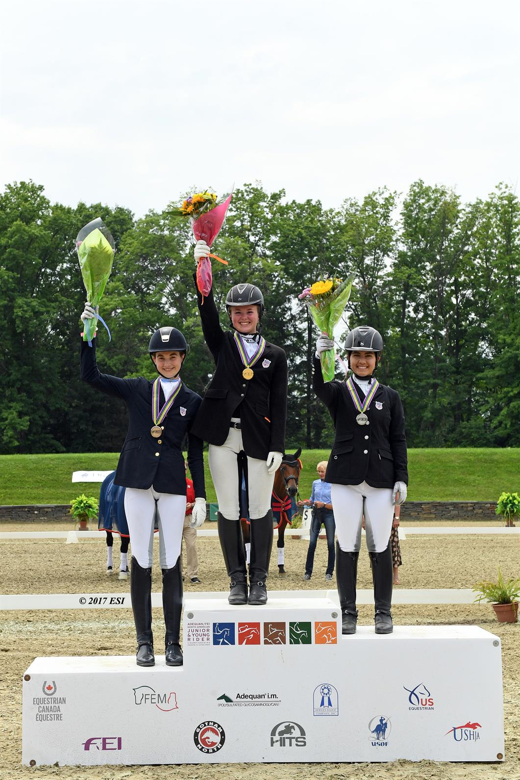 Najyrc 2017 At Hits On The Hudson A Victory For All Us