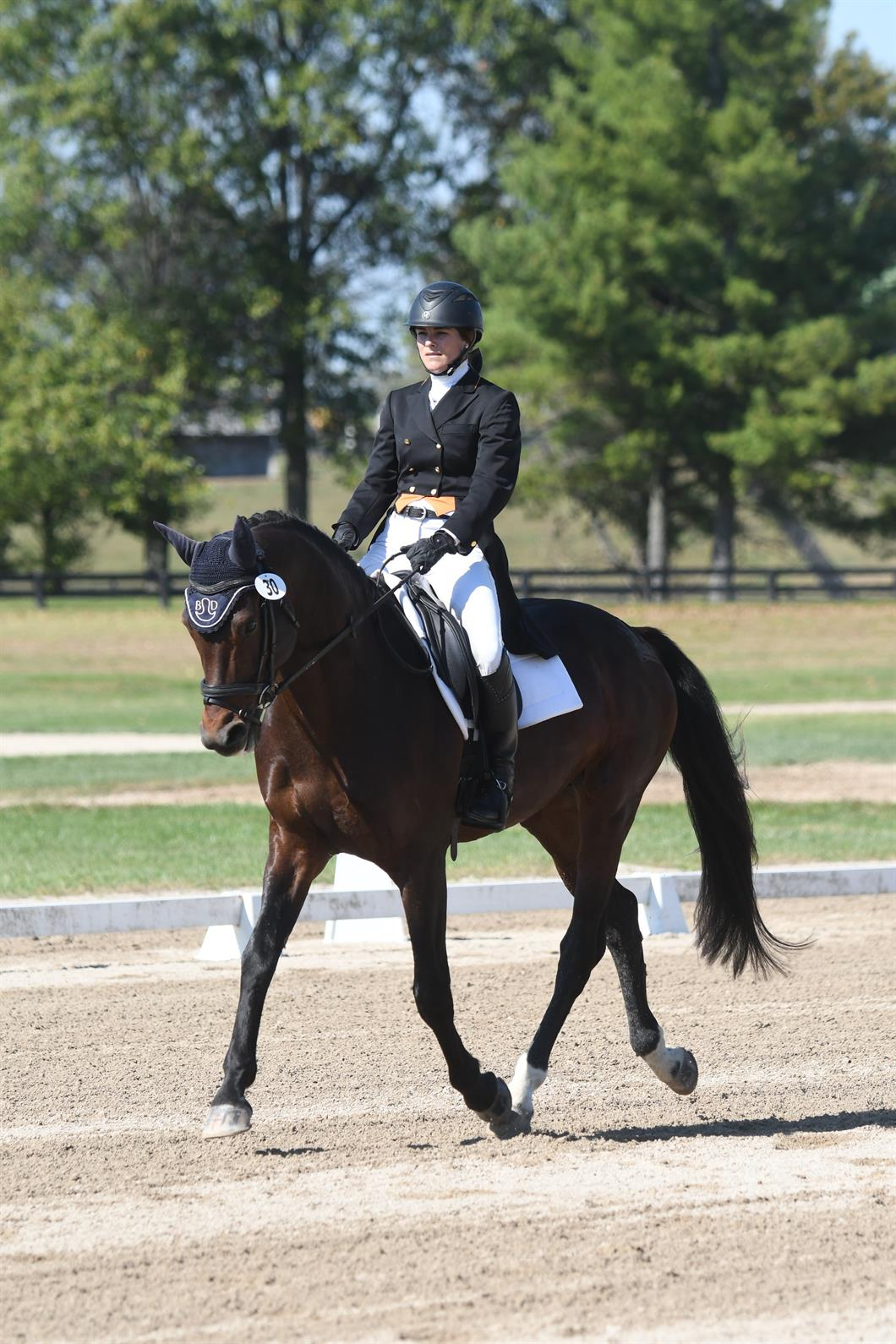 Hutchins Kristen Takes The Lead After Dressage In The Usef