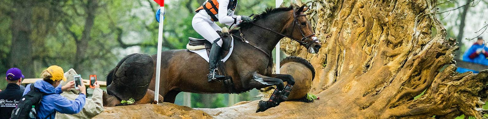 Usef Network Live Coverage Rolex