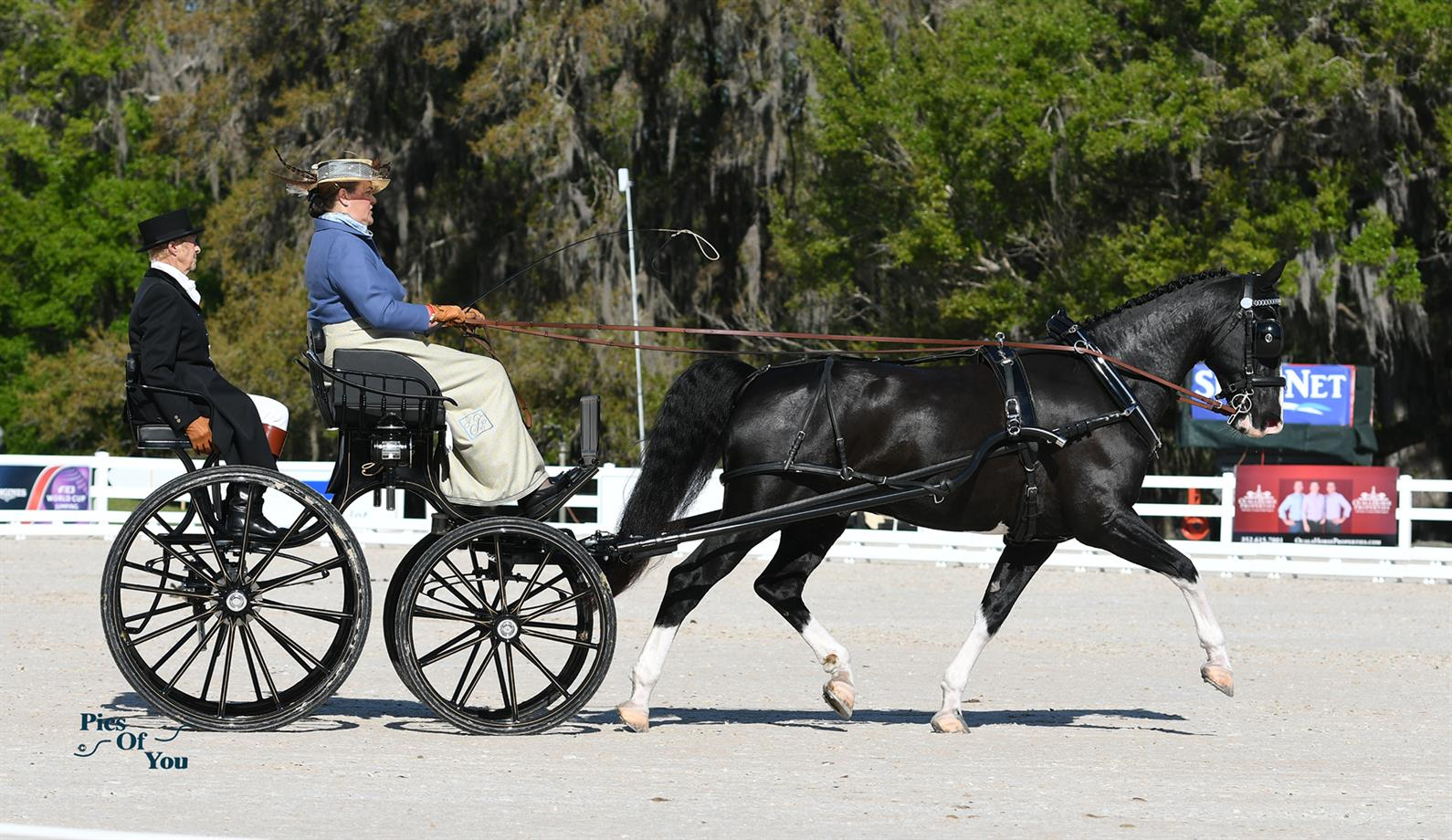 Thompson, Whittington, and Wright Secure Leads Following Dressage in