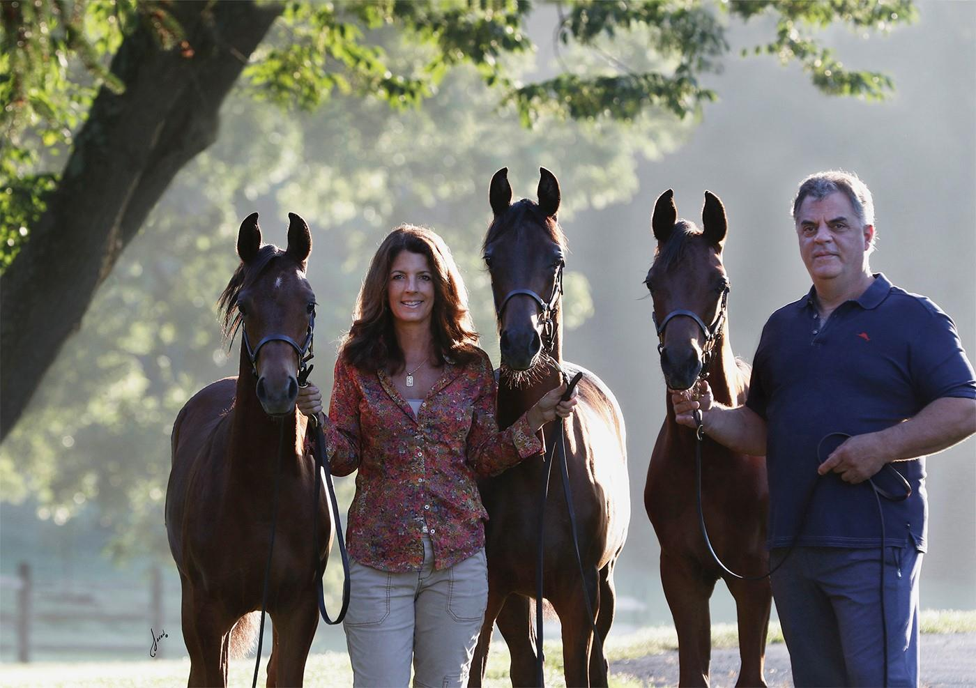 The Triplets A Love Story Us Equestrian