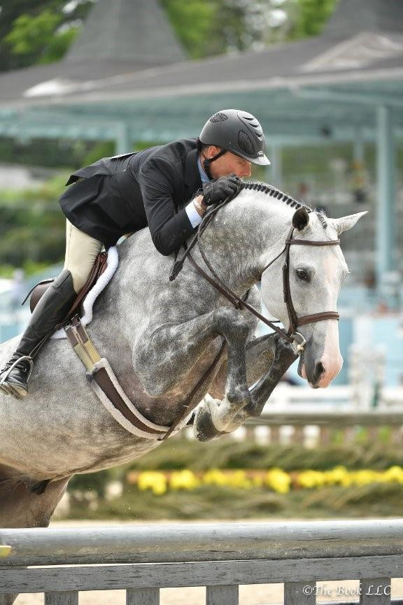 Mighty Nice And Catch Me Win 2016 Horse Of The Year Titles Us Equestrian
