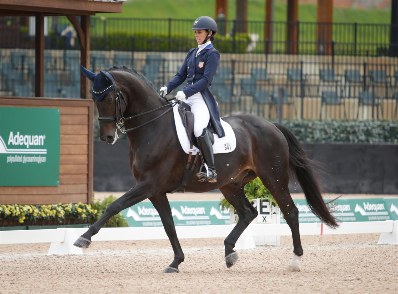 U S Dressage Looks Toward The Fei World Equestrian Games