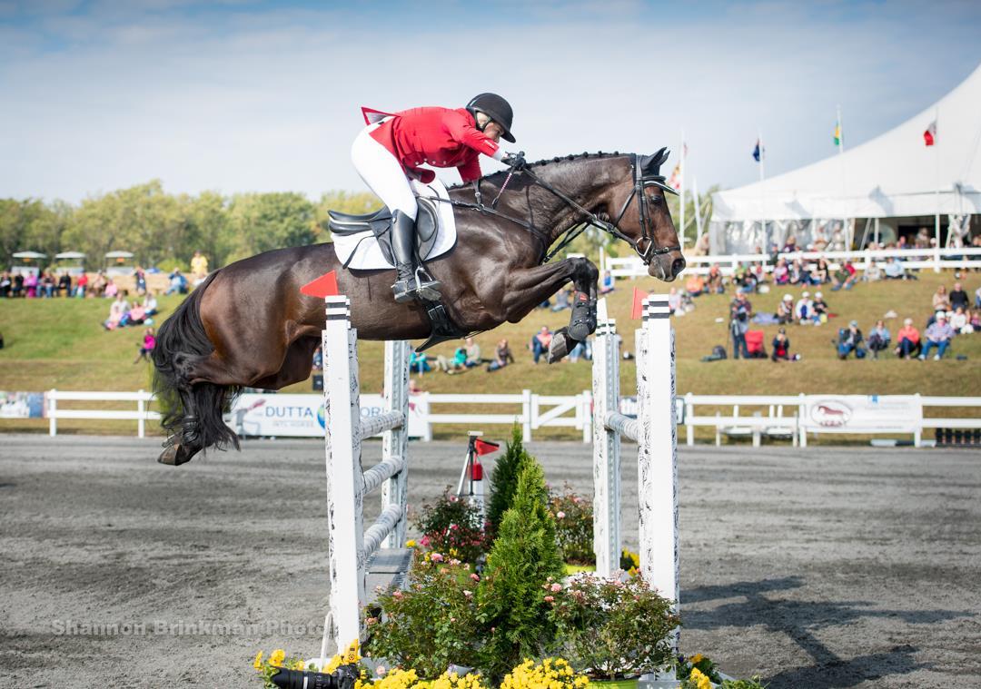 Saving Ground Fair Hill S Equestrian Community Unites To