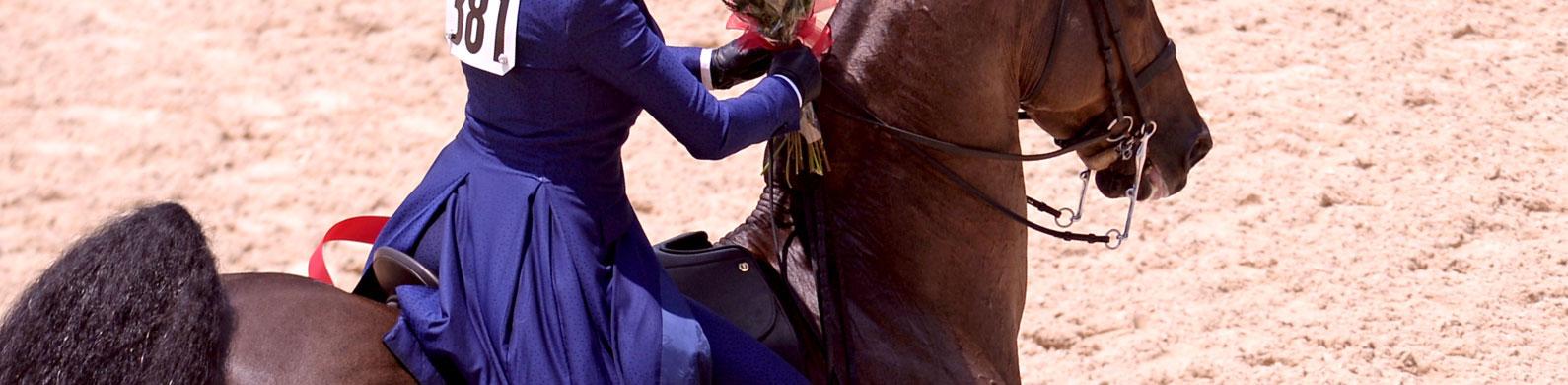 Saddle Seat Us Equestrian