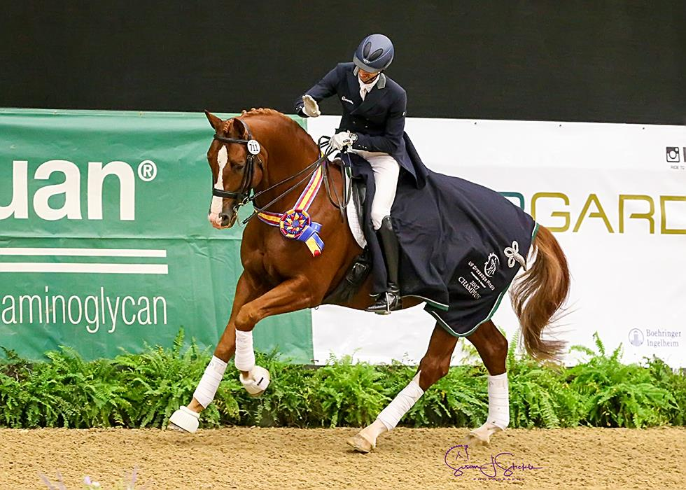 Nation S Top Dressage Riders Leave Their Mark On The 2017