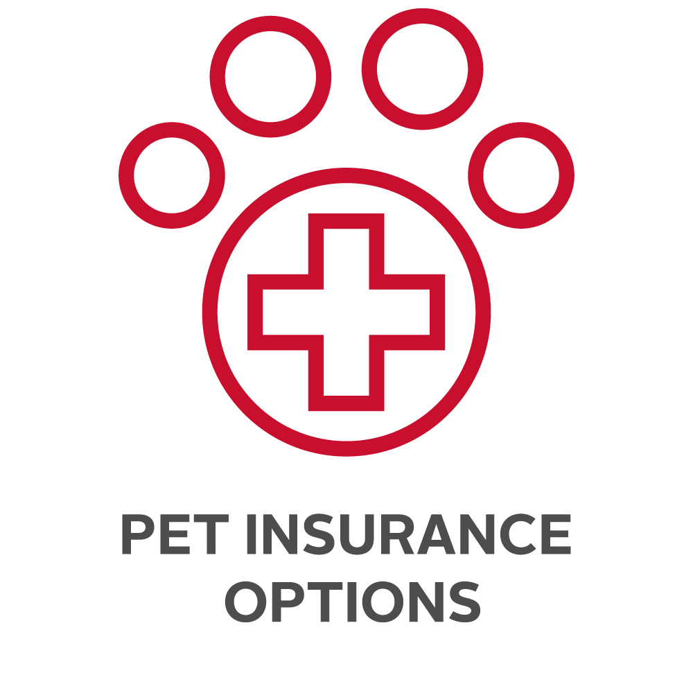 . Insurance - Pet