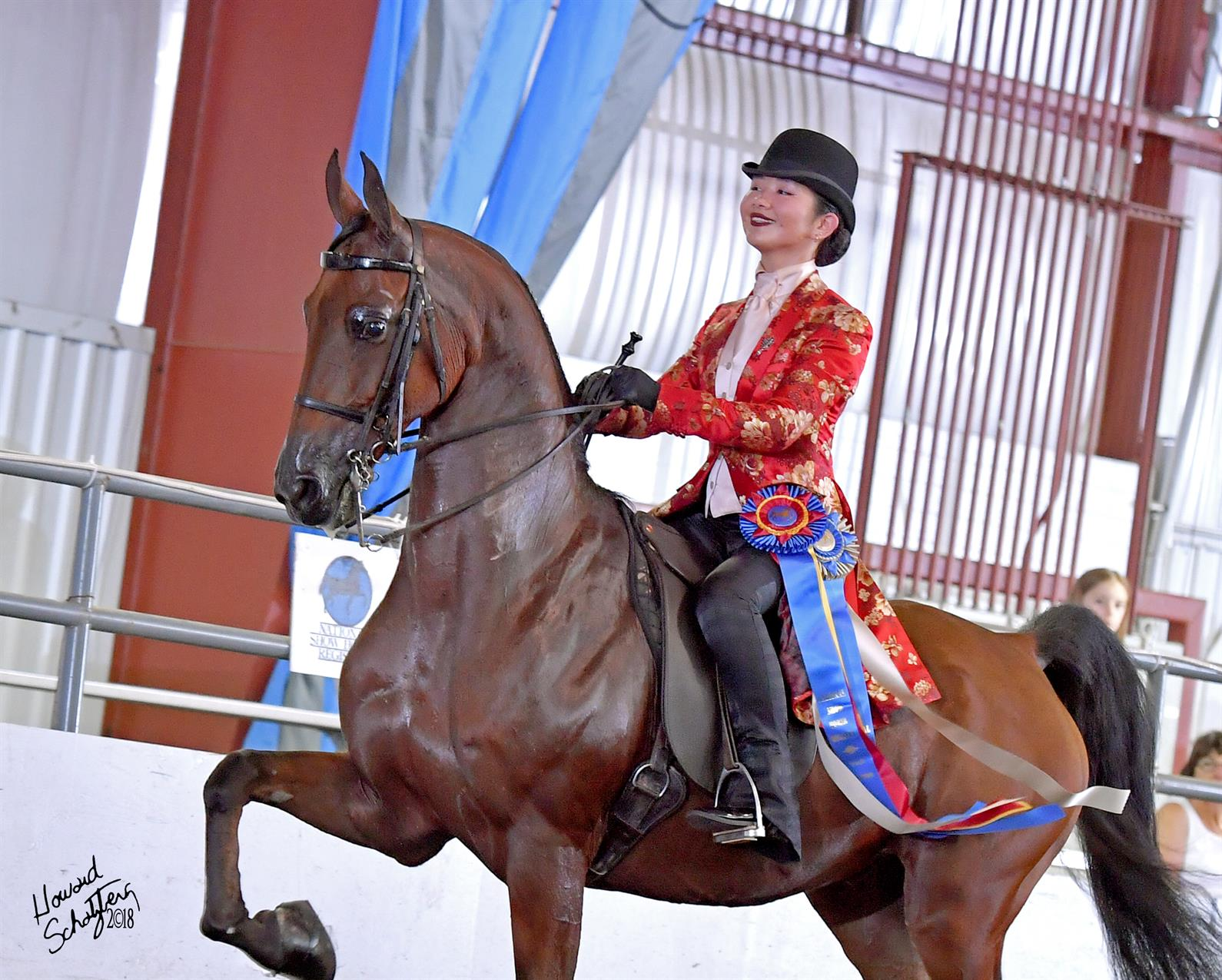 Champions Crowned At 2018 National Show Horse Finals Us