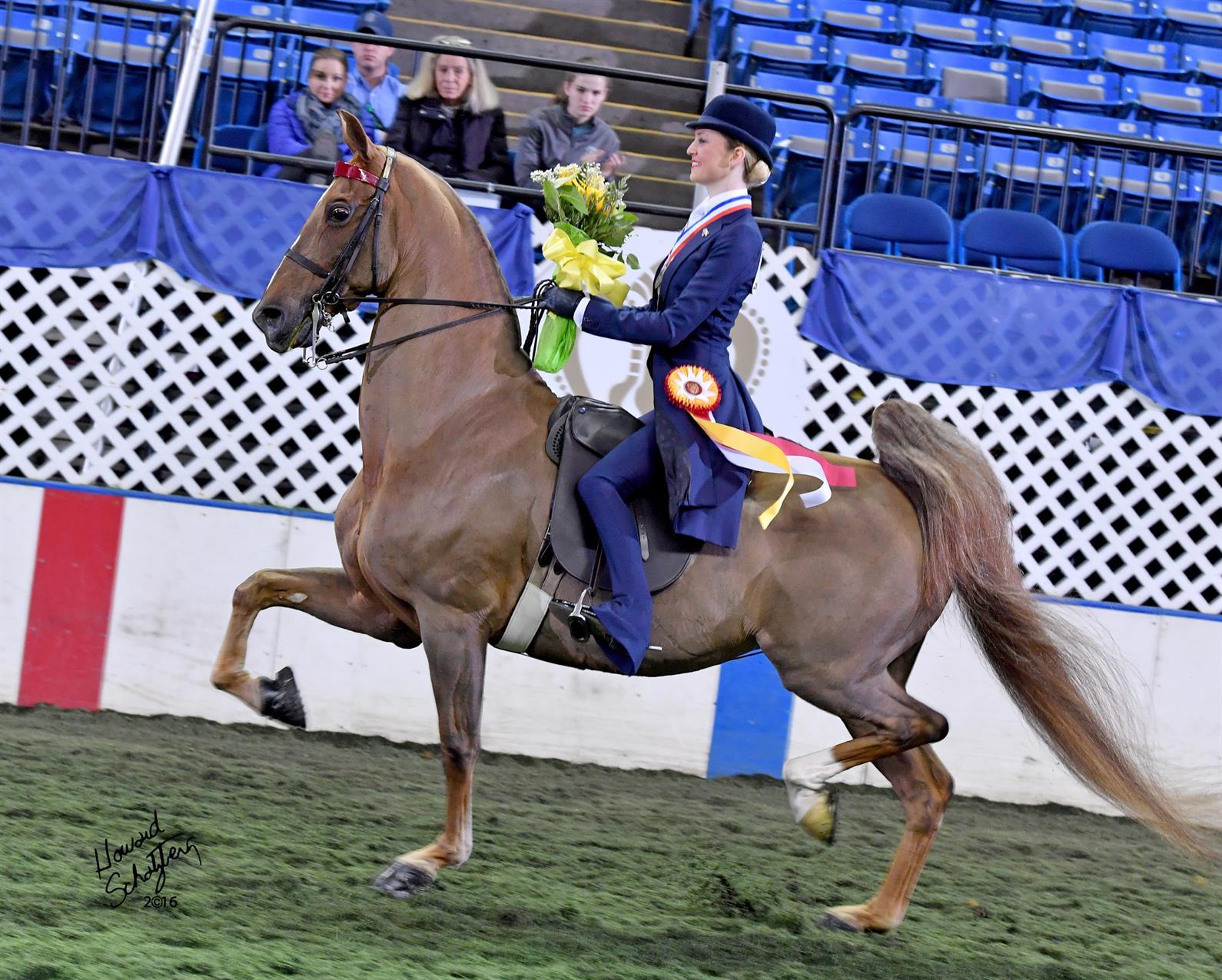 Competitors Set For Usef Saddle Seat Medal Final Us