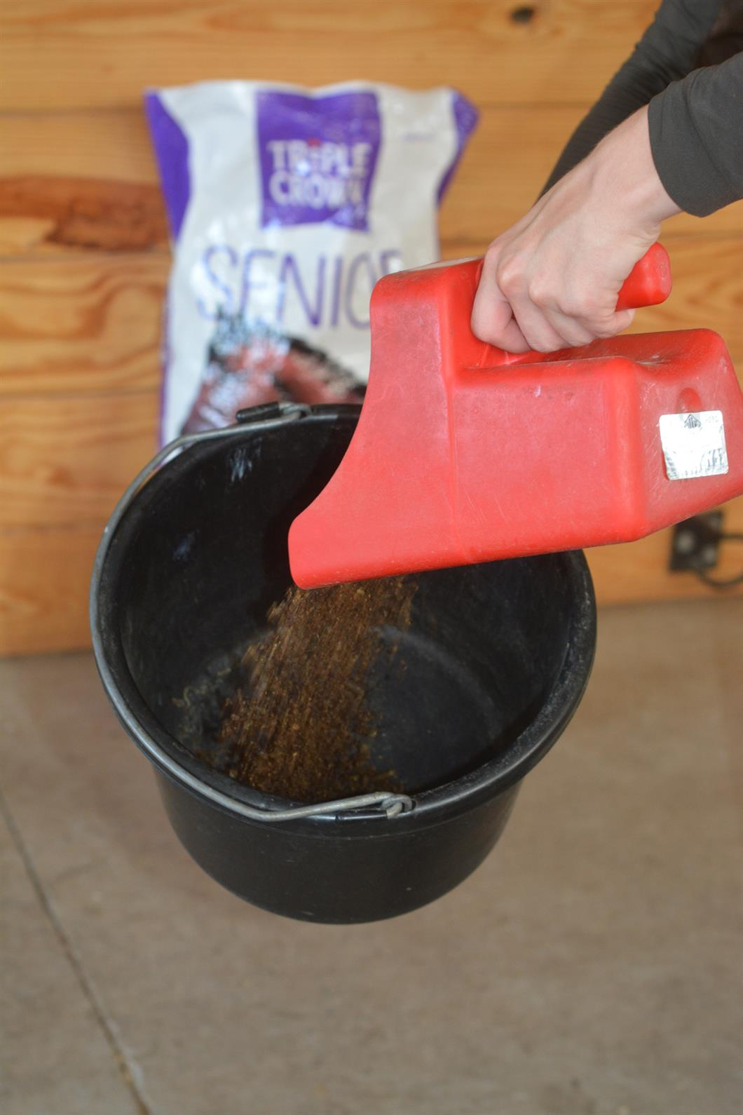 The Science Behind Your Horse's Feed | US Equestrian