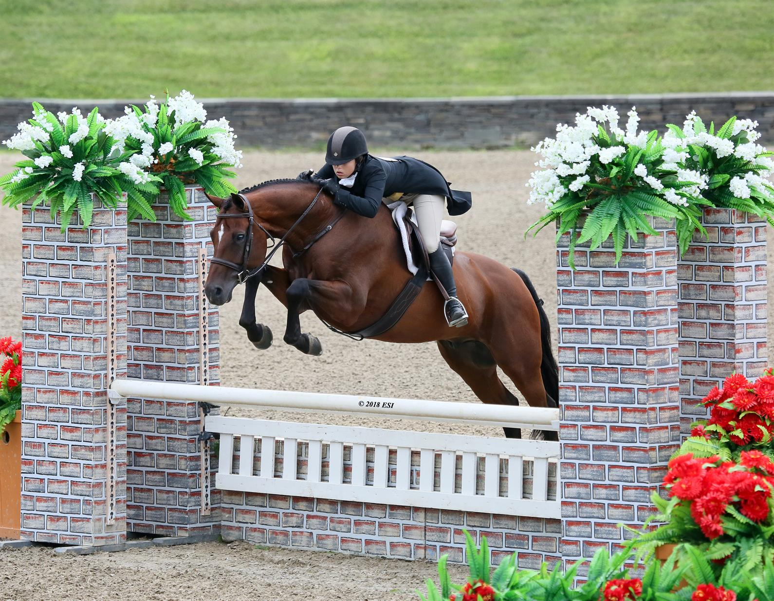 Us Equestrian Announces Dates And Locations For 2019 Usef