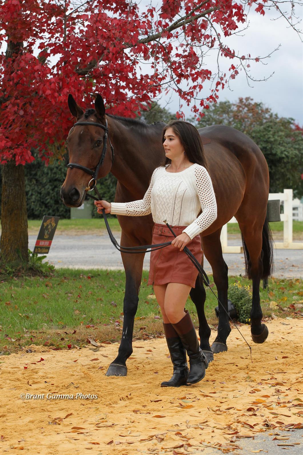 JR/YR National Championship Titles at 2018 Virginia Horse Trials