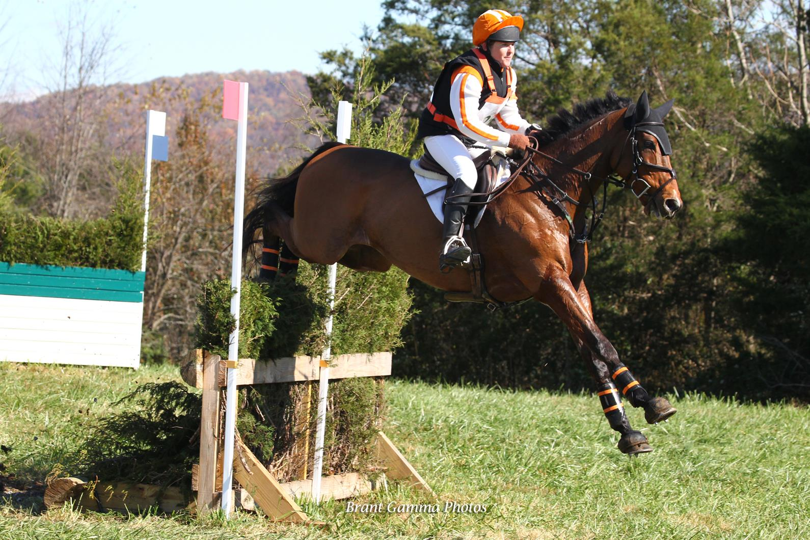 Sharon White Pulls Ahead After Cross-Country in the USEF CCI1* Eventing National Championship; Kelsey Ann Quinn Maintains the Lead in the USEF CCI1*-JR/YR Eventing National Championship