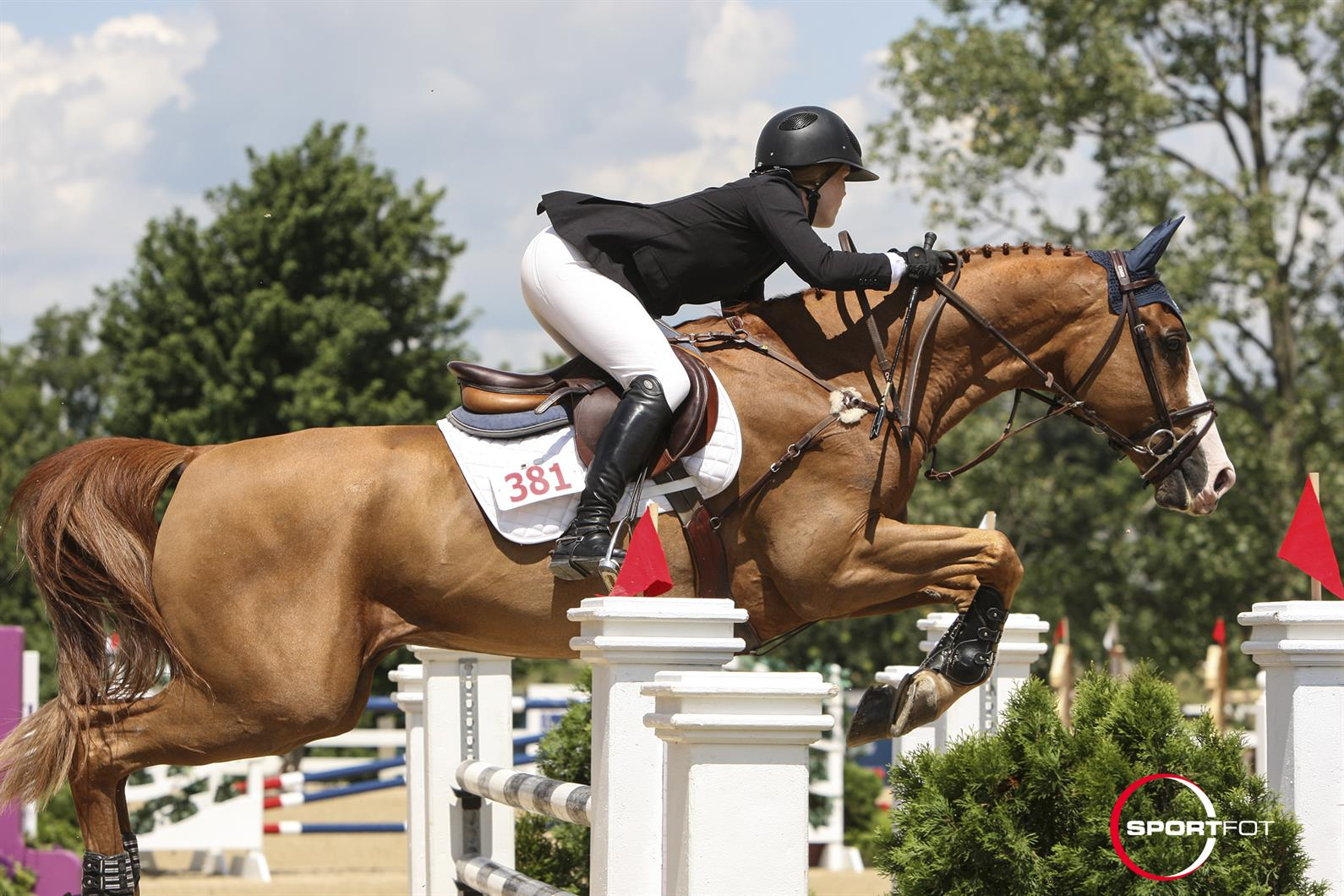 US Equestrian Names Show Jumping Children's and Junior ...