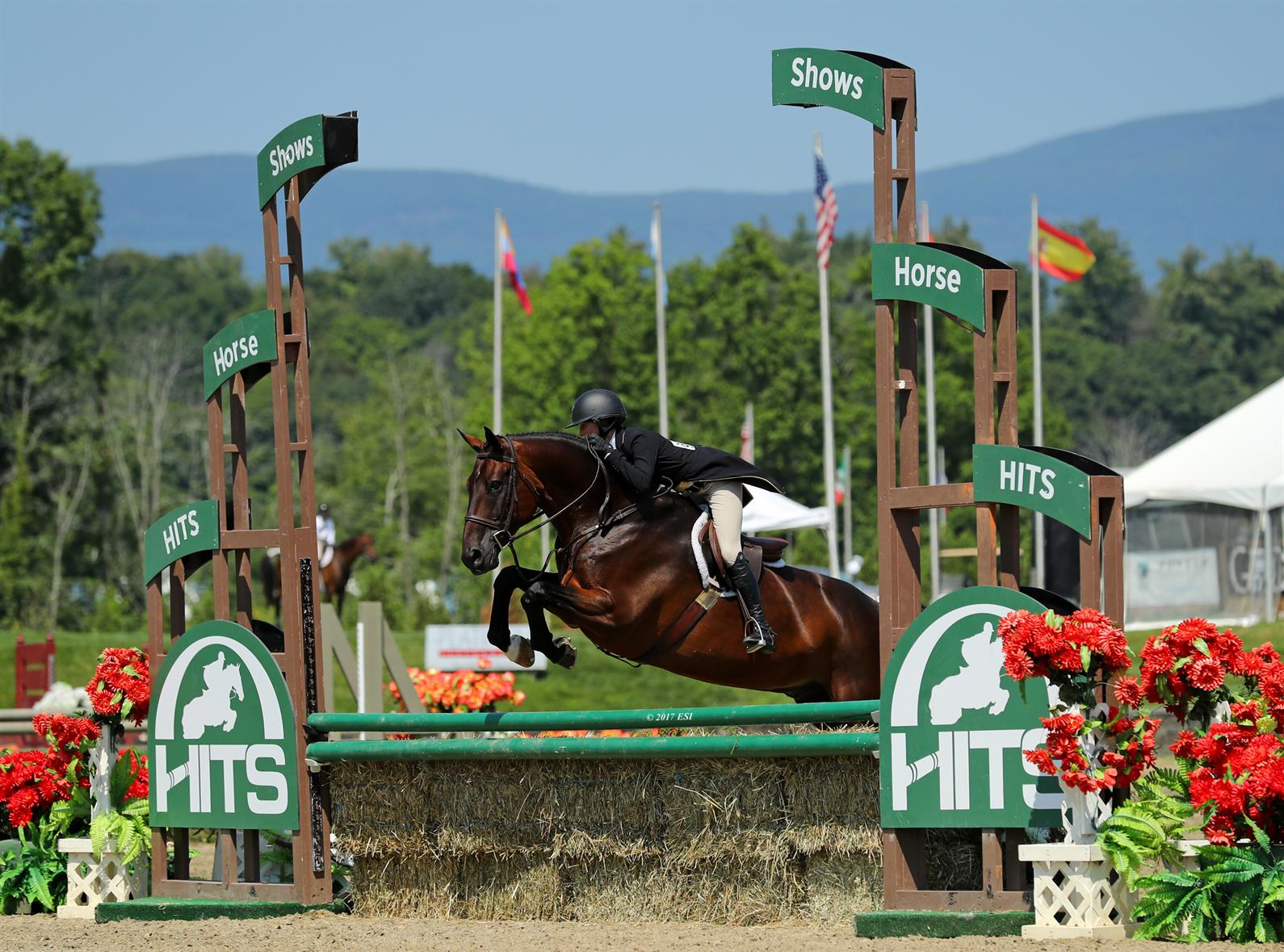 St Jacques And Swani Capture Grand Champion Titles At