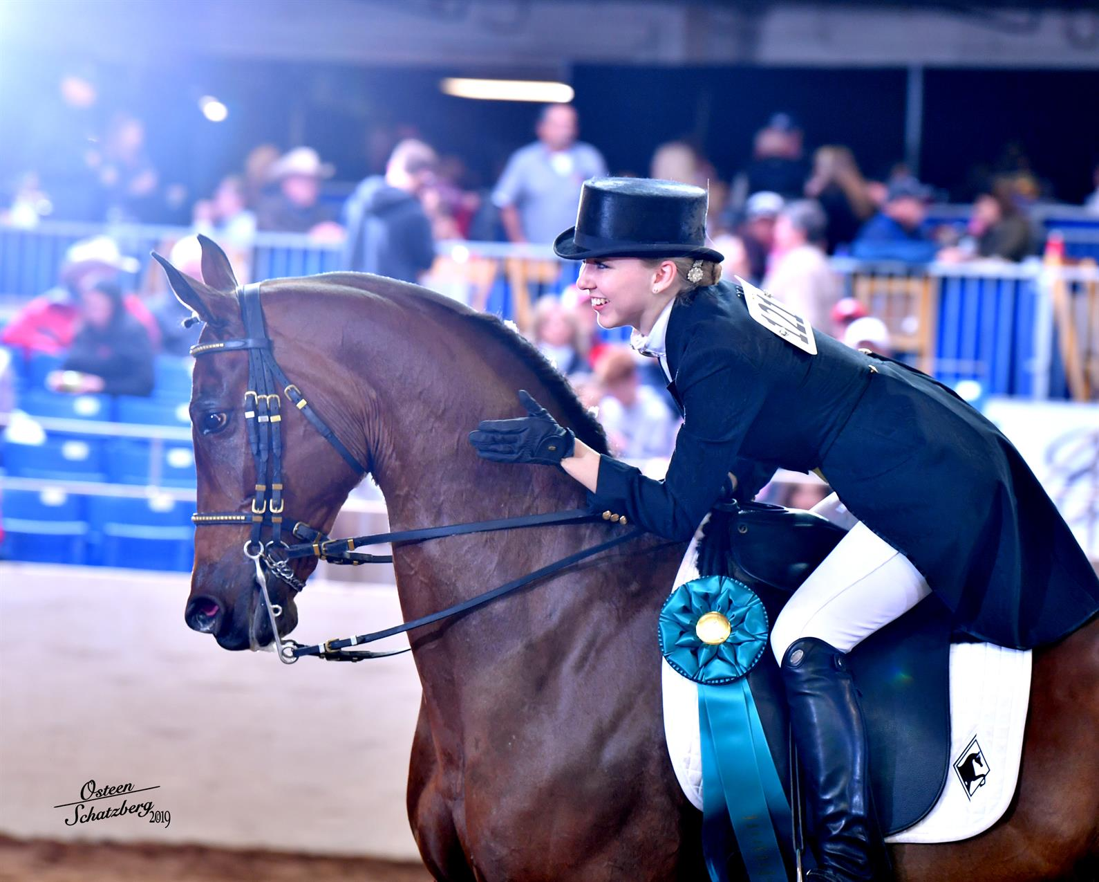 Arabian And Half Arabian Horses Gear Up For 65th Annual Scottsdale Arabian Horse Show Us Equestrian