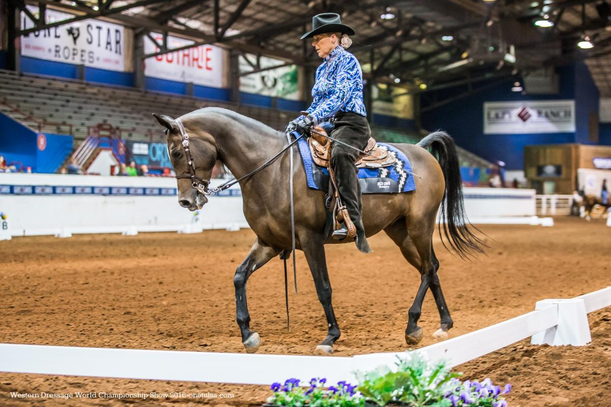Free Equitation - Western Riding Stock Photo - FreeImages.com