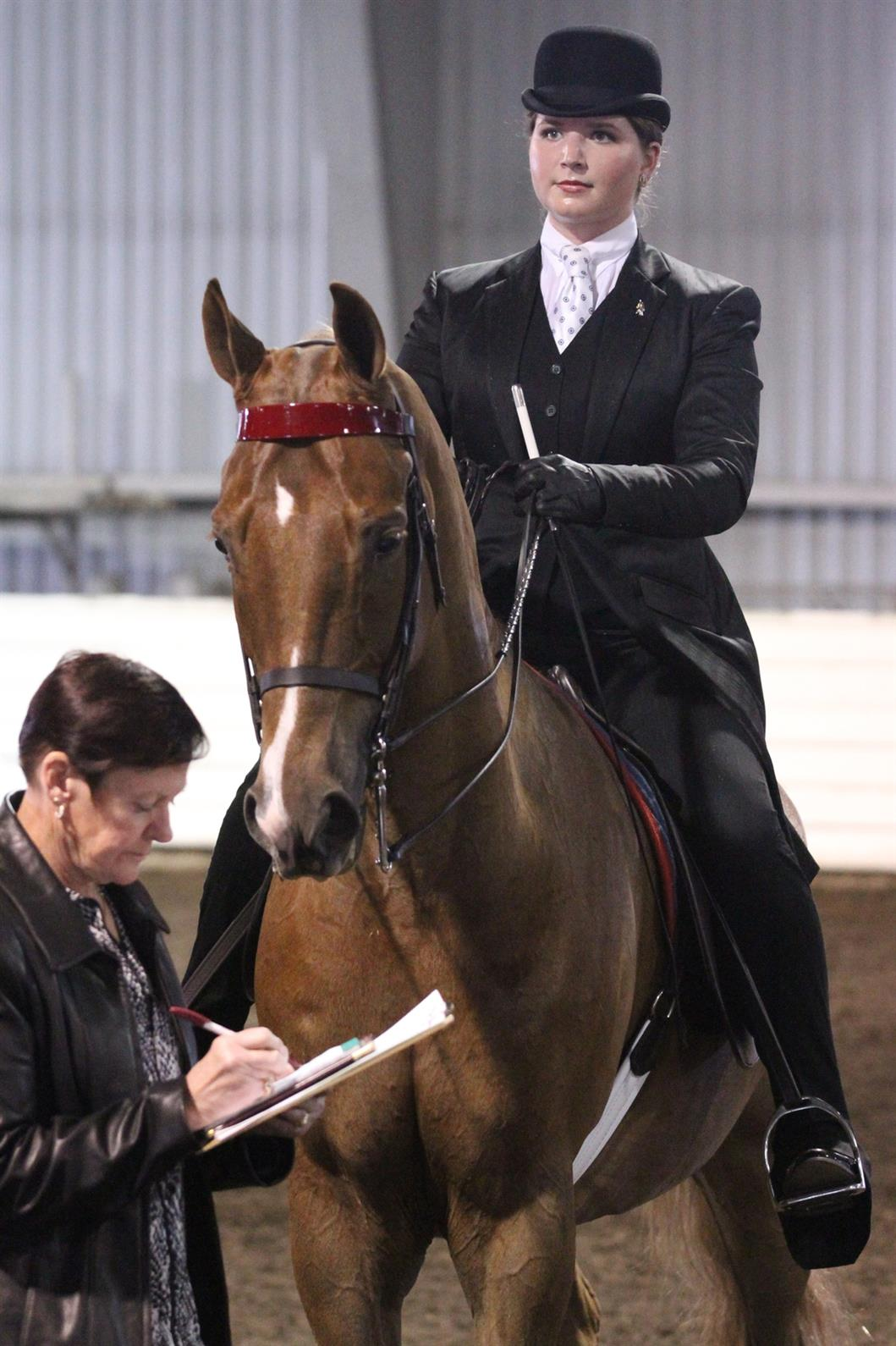 Becoming A Licensed Official Us Equestrian