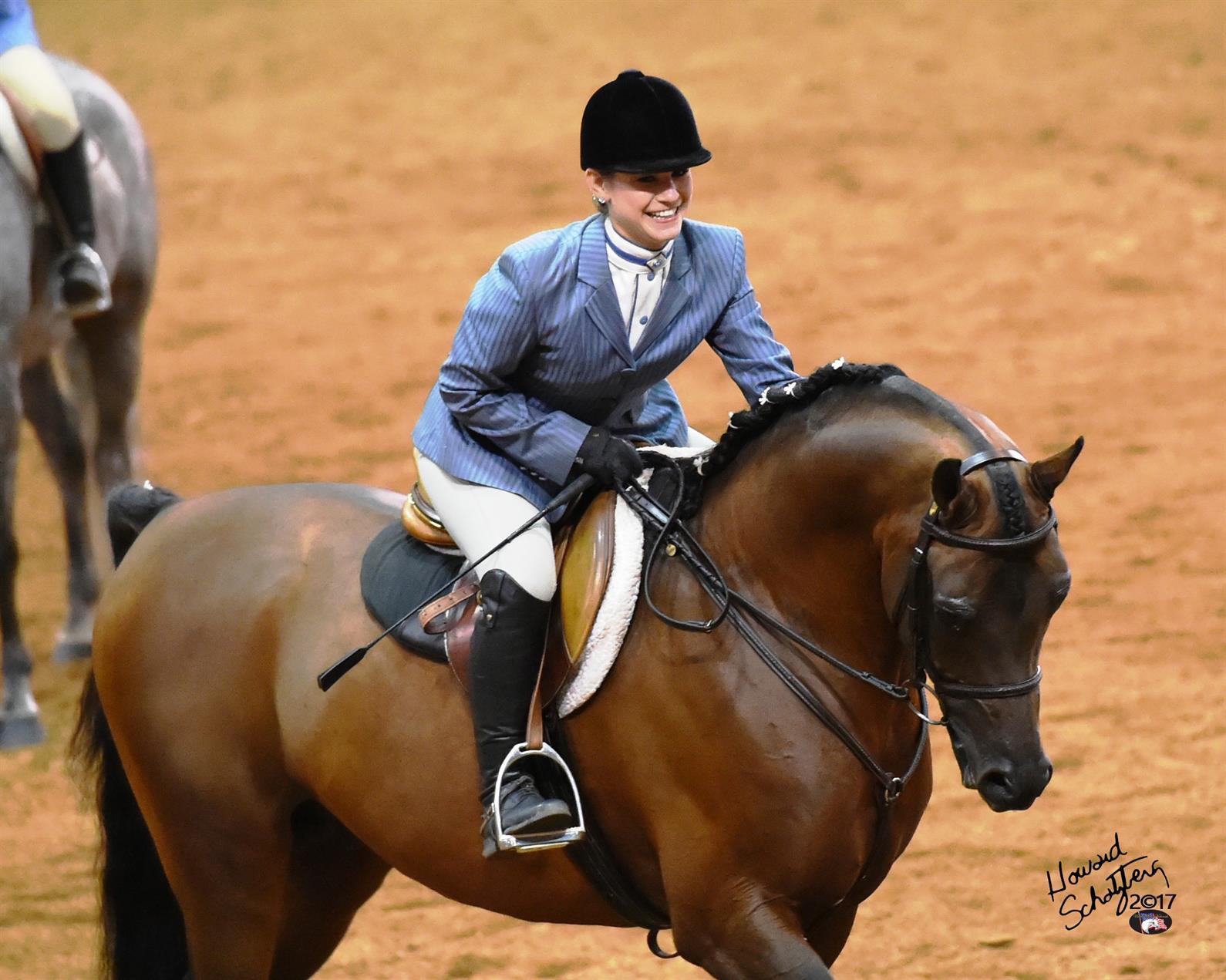 Arabian Horses Return To Tulsa For The 2018 U S National Show Us Equestrian
