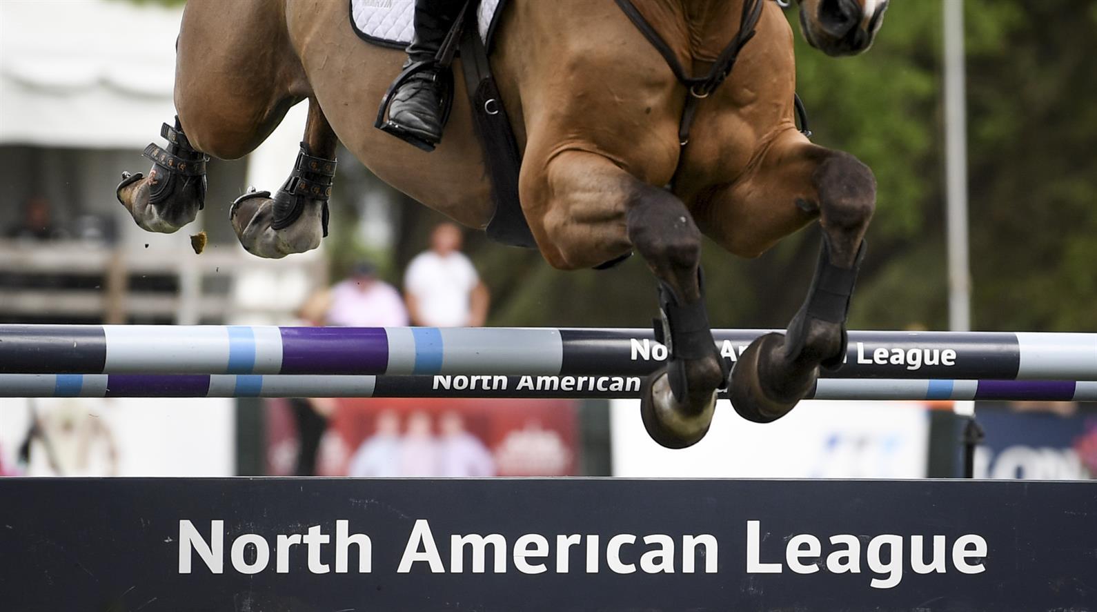 Photo: Andrea Evans/US Equestrian