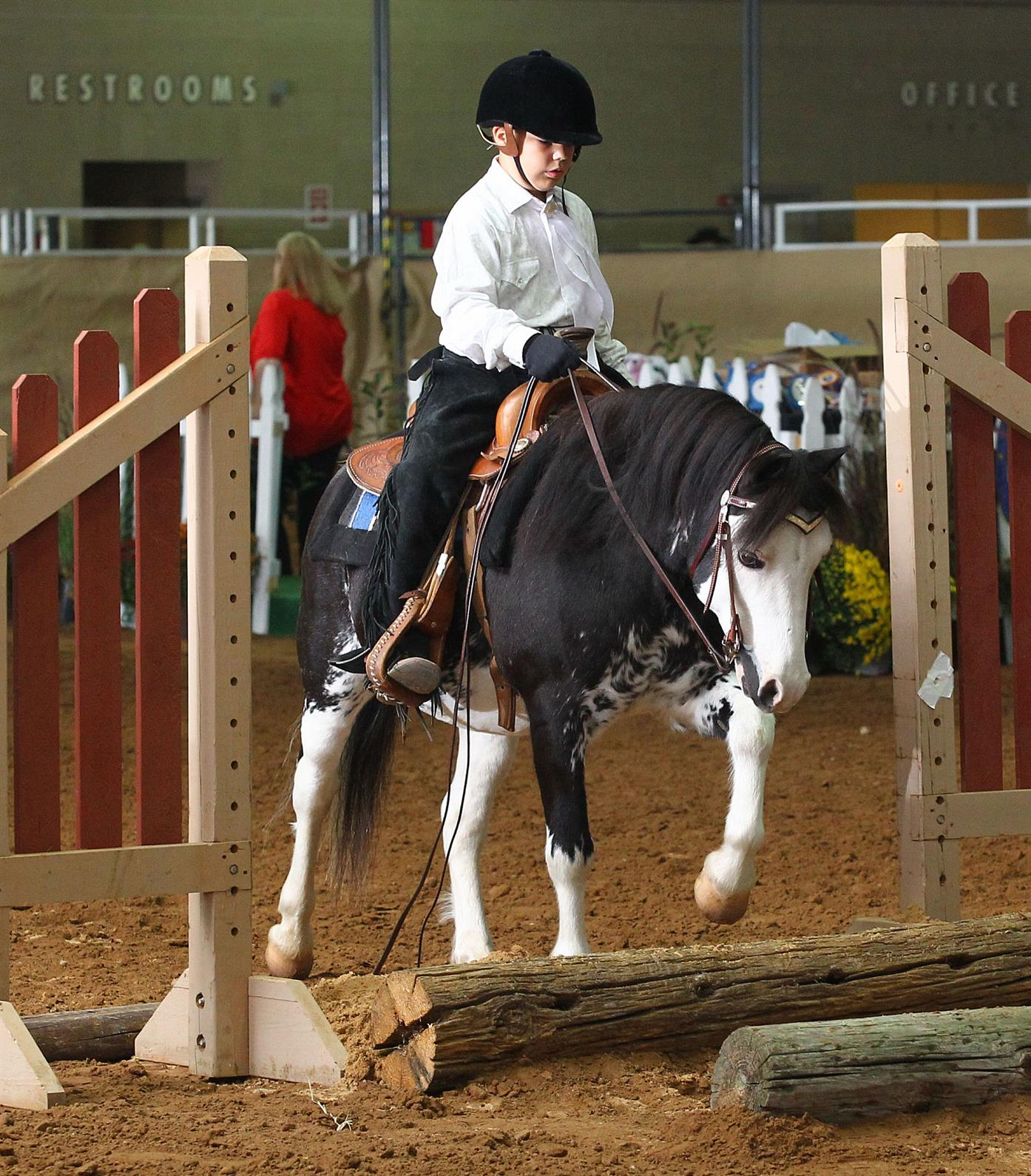 Welsh Pony Amp Cob Society Of America Gearing Up For The