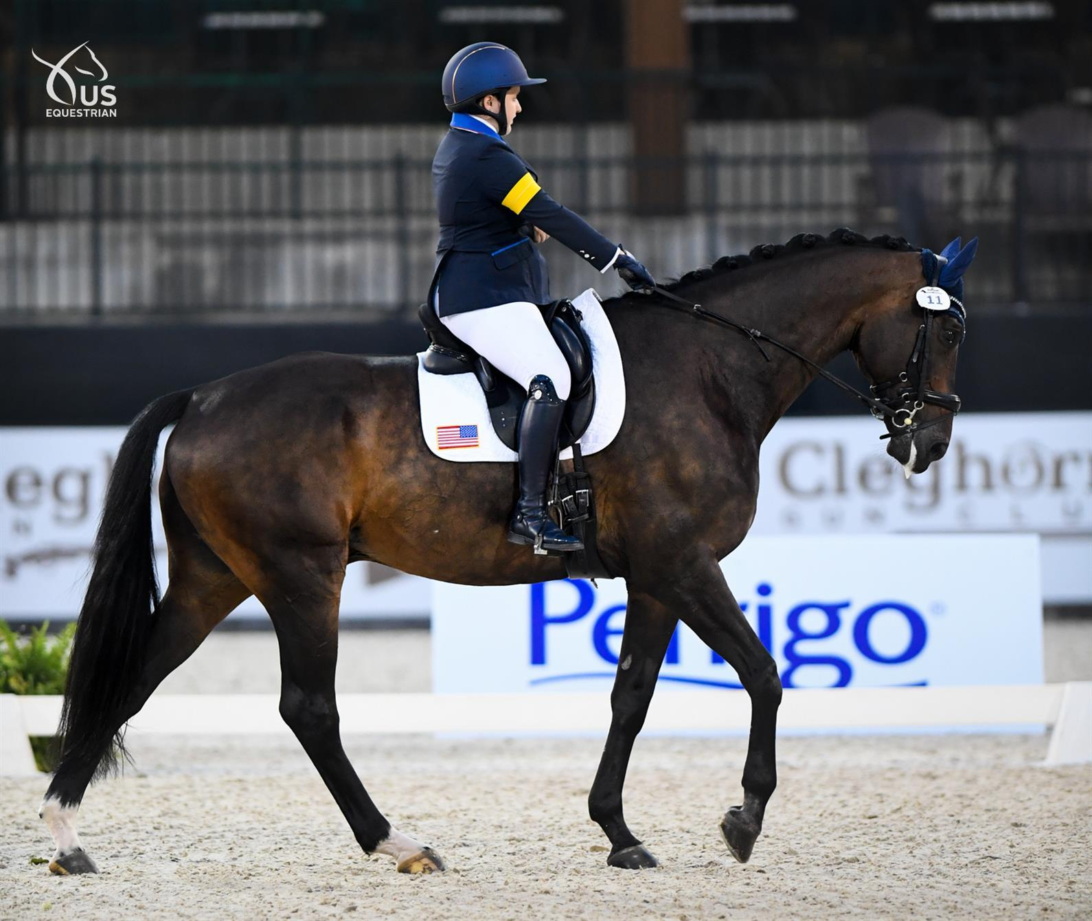 Sydney Collier and All In One at the Perrigo Tryon Sumer Dressage CPEDI3*